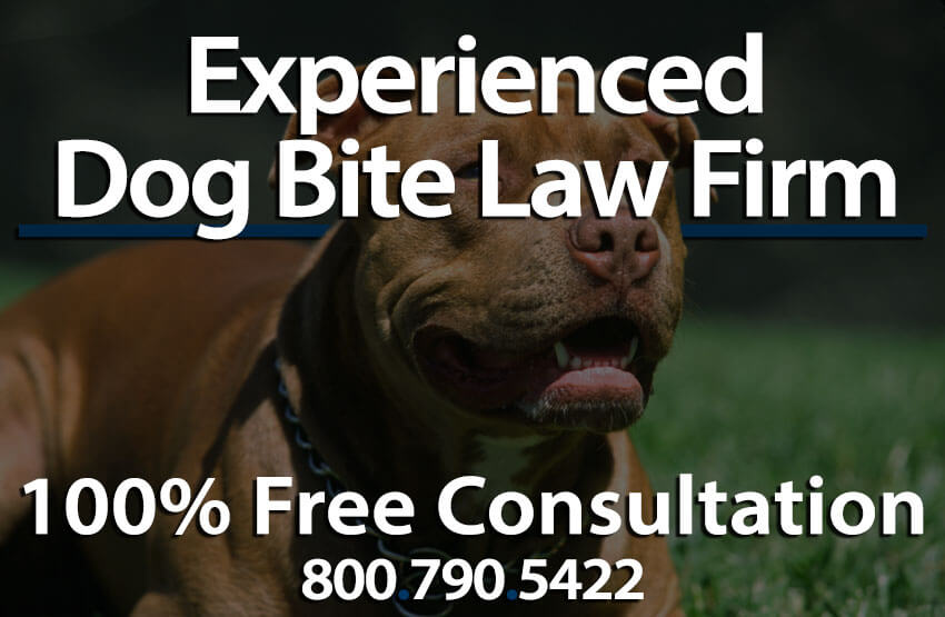 Dog bite laws tulare county animal attack ordinances ca dog bites can be truly damaging and can come almost unsuspectedly dogs may be considered some of our most loyal companions however they are still animals solutioingenieria Images