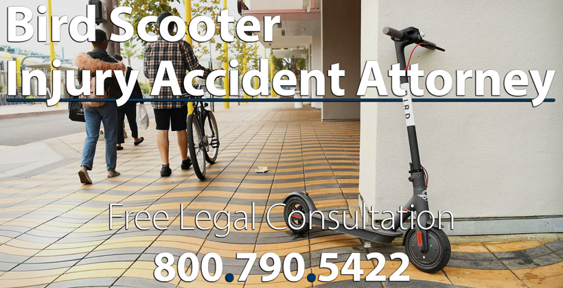 Bird Scooter Personal Injury Lawyer Los Angeles California